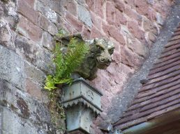 Ross Church Gargoyle