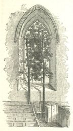 Trees in the pew