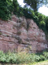 The Cliff Ross-on-Wye