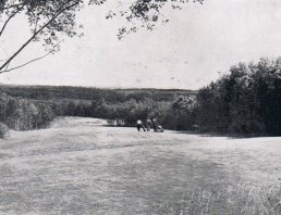 The seventh fairway in 1966