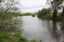 River Wye at Backney Bridge (9-5-10)