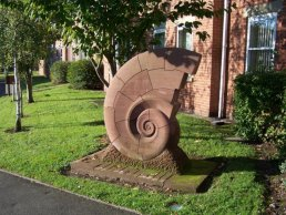 The Snail, Ross