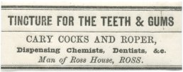 Tincture for the Teeth and Gums