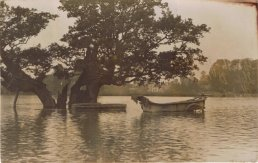 Oak Meadow in flood (1912)