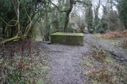 The north side of the Welsh Bicknor pill box (03-01-2011)