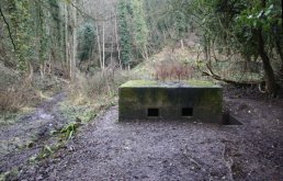 The south side of the Welsh Bicknor pill box (03-01-2011)
