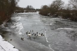The ice on the Wye seen from outside the Hope & Anchor