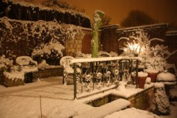 The garden in the snow
