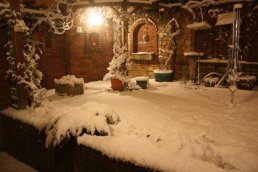 The snow in the garden
